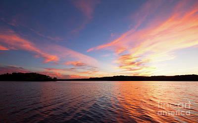 Photograph - Rose Skies by Barbara McMahon
