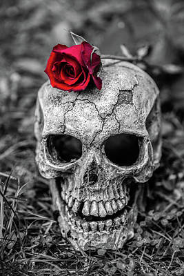 Photograph - Rose Skull by Martina Fagan