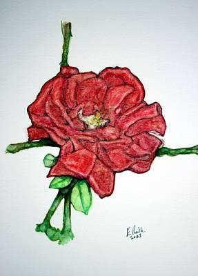 Rose Study No 1 Art Print by Edward Ruth