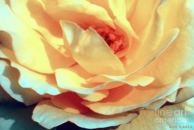 Digital Art - Rose / Summer Sky by Elizabeth McTaggart
