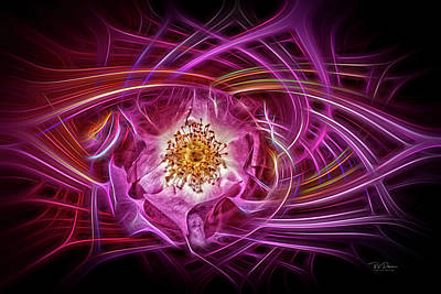 Digital Art - Rose Swirls by Bill Posner
