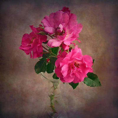 Print featuring the photograph Rose Trio Still Life by Louise Kumpf