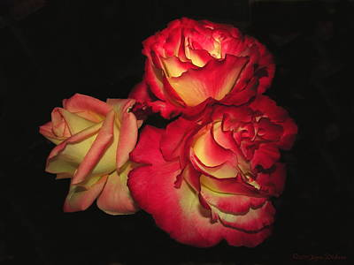 Photograph - Rose Trio Two by Joyce Dickens