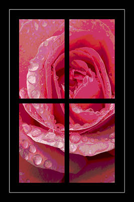 Rose Window Art Print