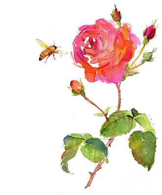 Rose With Bee Art Print