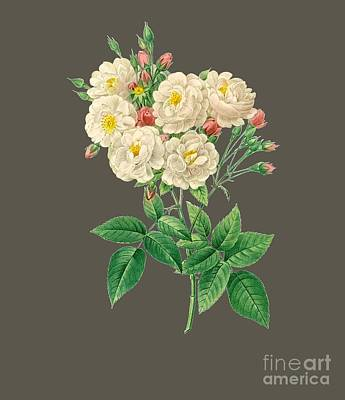 Bonny Painting - Rose126 by The one eyed Raven