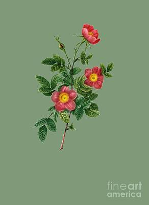 Bonny Painting - Rose139 by The one eyed Raven