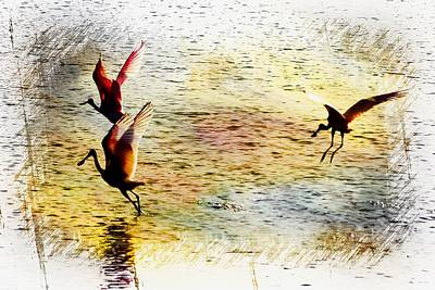 Spoonbill Digital Art - Roseate Spoonbill Sunset by Sheri McLeroy