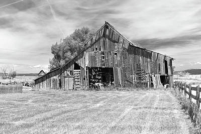 Photograph - Roseberry Horse Barn by Richard J Cassato