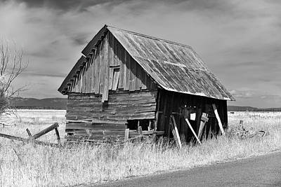 Photograph - Roseberry Shed 2 by Richard J Cassato