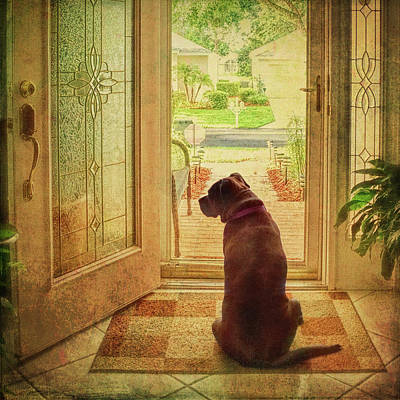Art Print featuring the photograph Rosebud At The Door by Lewis Mann