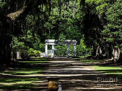 Photograph - Rosedown Plantation Main Gate by Ken Frischkorn