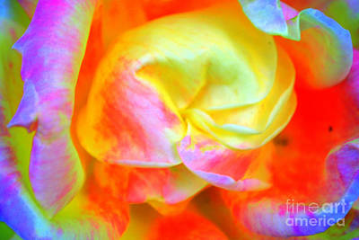 Photograph - Roses 3 by Diane montana Jansson