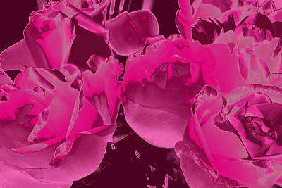 Roses #5 Art Print