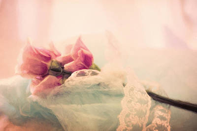 Photograph - Roses And Lace by Lana Trussell