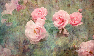 Photograph - Roses And Romance by Liz Alderdice
