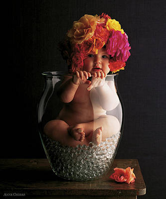 Vase Photograph - Roses by Anne Geddes