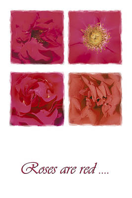 Roses Are Red .... Art Print by Hazy Apple