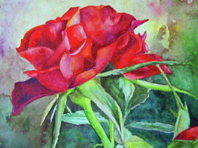 Painting - Roses Are Red by Karen Kennedy Chatham