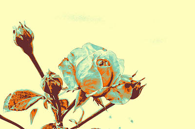 Meiklejohn Pyrography - Roses by Artistic Panda