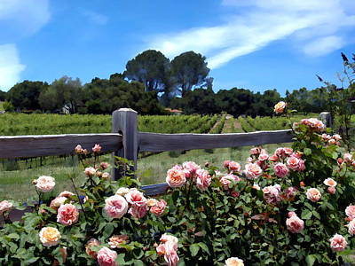 Photograph - Roses At Rusack Vineyards by Kurt Van Wagner