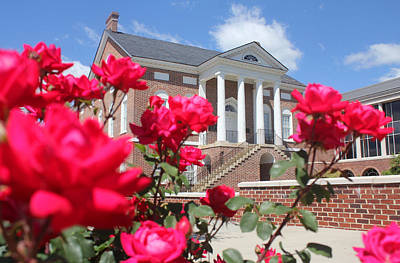 Photograph - Roses At The Court House 1 by Joseph C Hinson Photography