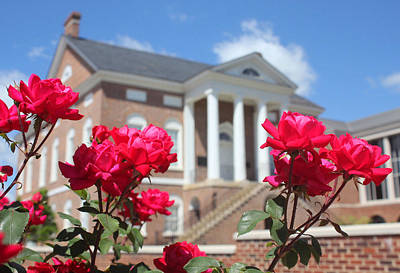 Photograph - Roses At The Court House 2 by Joseph C Hinson Photography