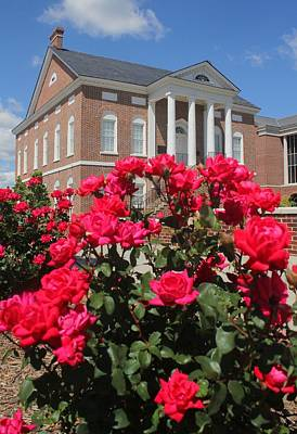 Photograph - Roses At The Court House 3 by Joseph C Hinson Photography