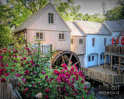 Photograph - Roses At The Plimoth Grist Mill by Janice Drew