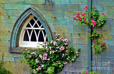 Photograph - Roses At The Window by Judi Bagwell