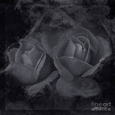 Roses Black White 4 Print by Mona Stut