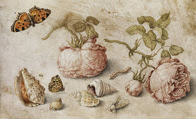Grasshopper Painting - Roses, Butterflies And Shells by Jan van Kessel