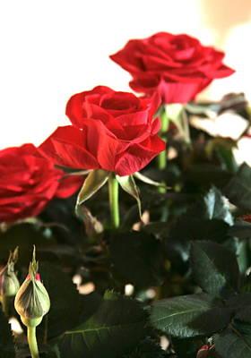 Painting - Roses For Valentine's Day by Masha Batkova