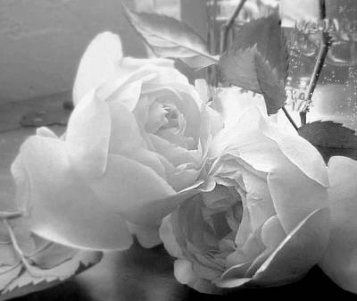 Photograph - Roses In Repose by Diana Besser