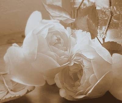 Photograph - Roses In Sepia by Diana Besser