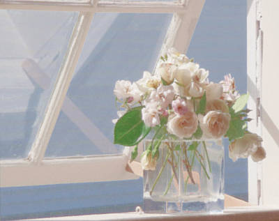 Chatham Photograph - Roses In Window by Heather MacKenzie