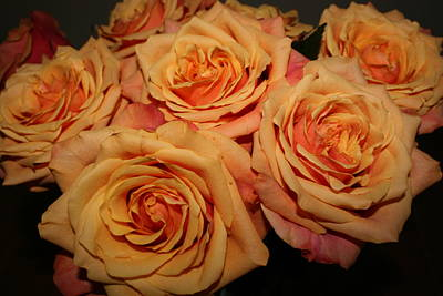 Roses Art Print by Linda Hardin