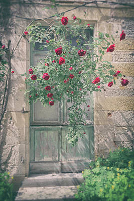 Country Cottage Photograph - Roses Over A French Door by Georgia Fowler