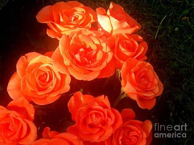 Digital Art - Roses by Pauli Hyvonen
