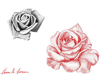 Digital Art - Roses by ThomasE Jensen