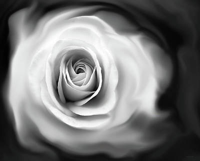 Photograph - Rose's Whisper Black And White by Jennie Marie Schell