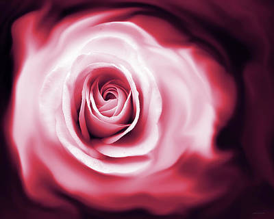 Rose's Whispers Magenta  Art Print by Jennie Marie Schell