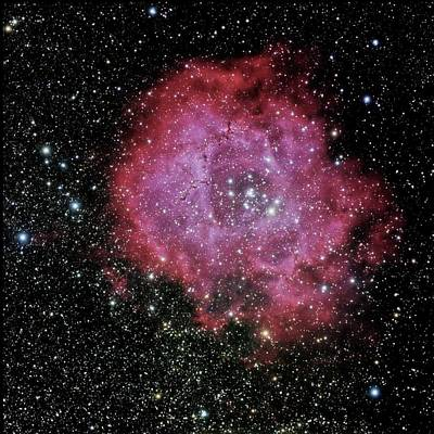 Photograph - Rosette Nebula In The Constellation Monoceros by Alan Vance Ley
