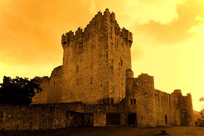 Castle Photograph - Ross Castle by Aidan Moran