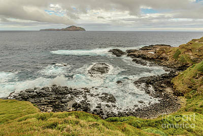 Photograph - Ross Point 2 by Werner Padarin