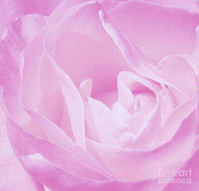 Rosy Cheek Pink Art Print by Janice Westerberg
