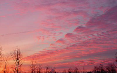 Photograph - Rosy December Sun Rise by Terrance DePietro