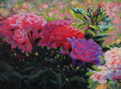 Painting - Rosy Glow by Karen Ilari