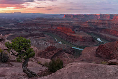 Photograph - Rosy Sunrise At Deadhorse Point by Expressive Landscapes Fine Art Photography by Thom