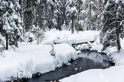 Photograph - Rotenbeek, Harz by Andreas Levi